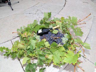 Festa uva